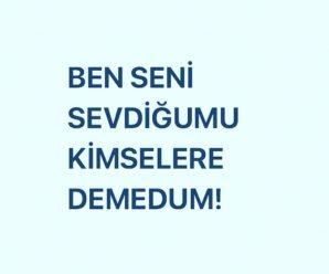 BEN SENİ SEVDİĞUMU KİMSELERE DEMEDUM!