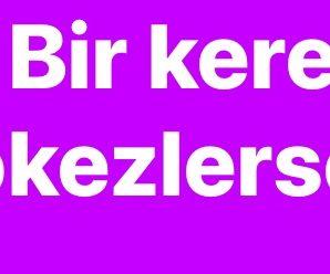"""""""BİR KERE TÖKEZLERSEK, BİZİ LİME LİME EDECEKLER!"""""""