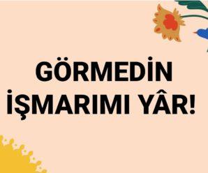 GÖRMEDİN İŞMARIMI YÂR!